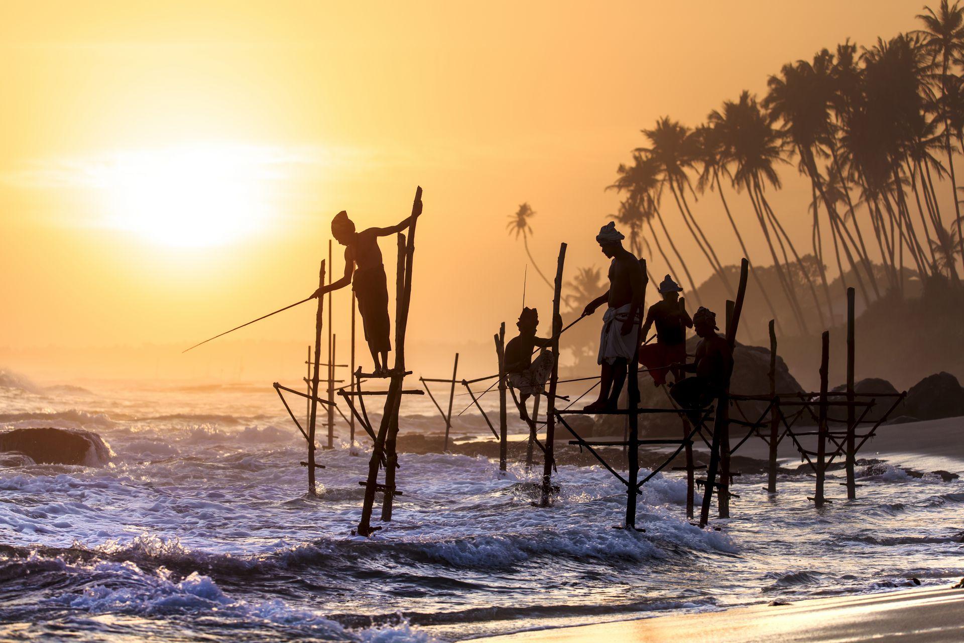 Шри-Ланка: остров приключений