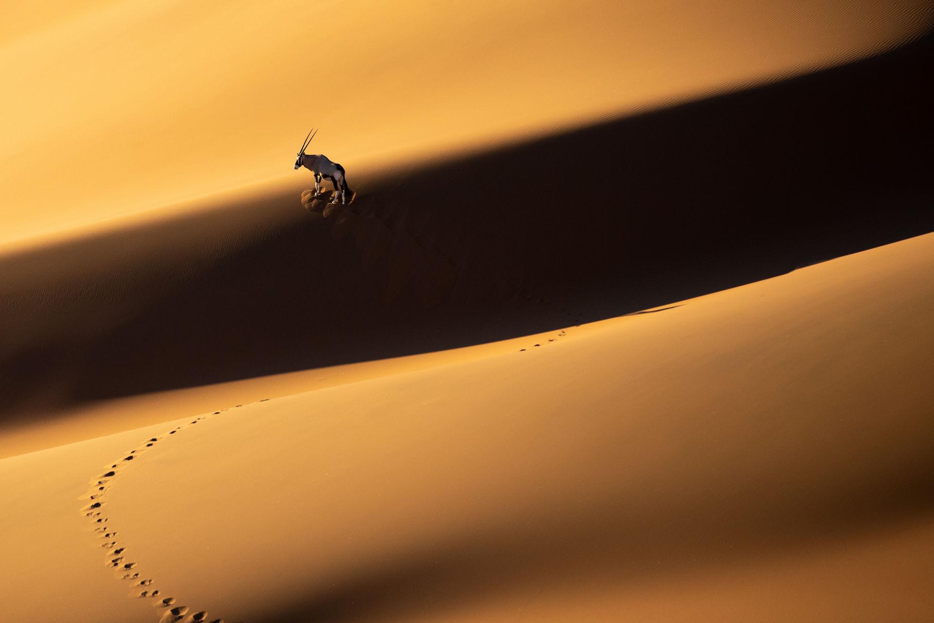 Намибия – это любовь