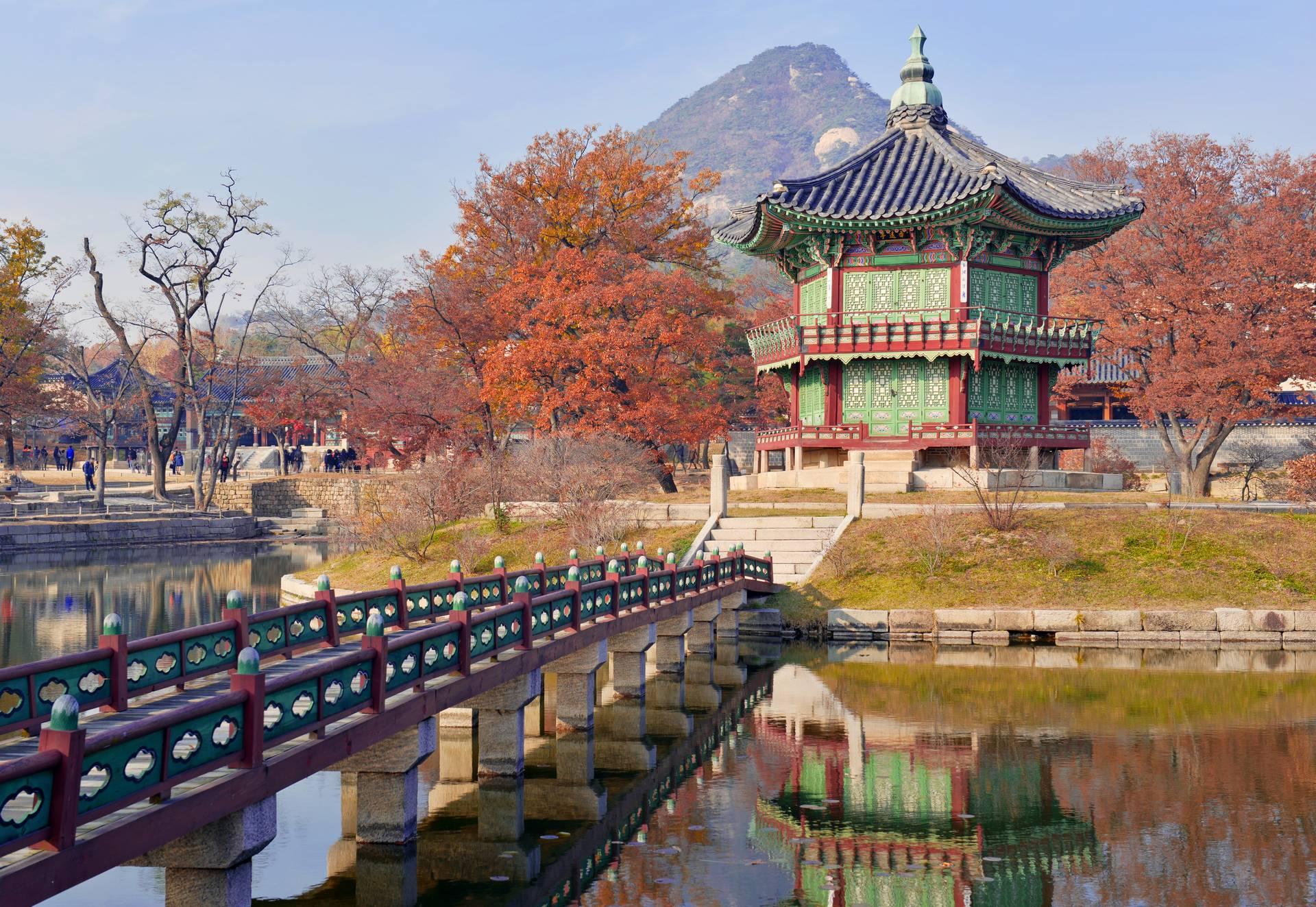 Южная Корея в период красных кленов