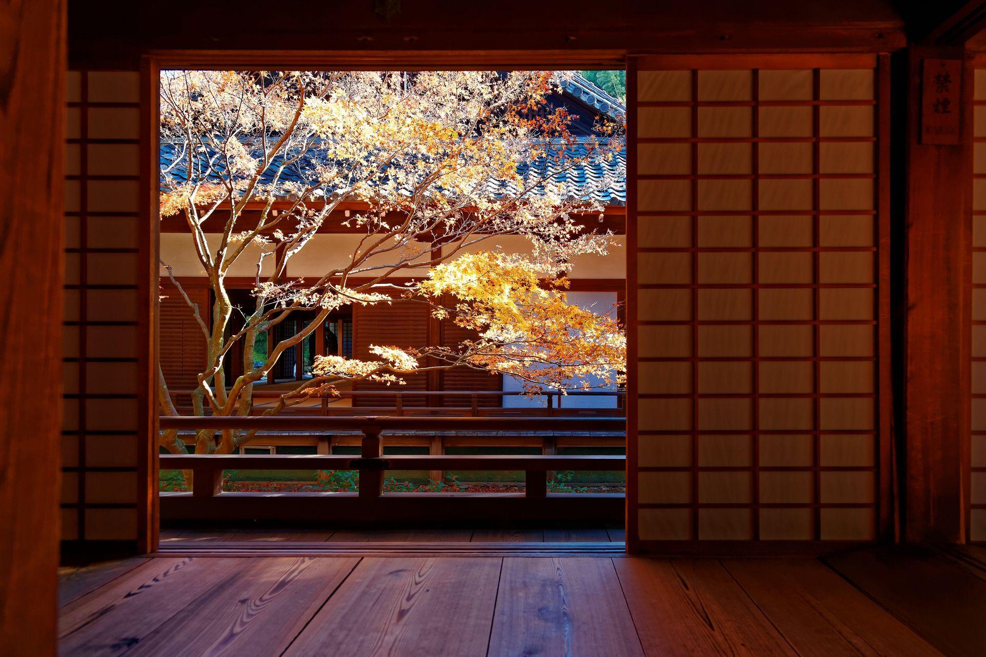 Япония – традиции и красоты природы