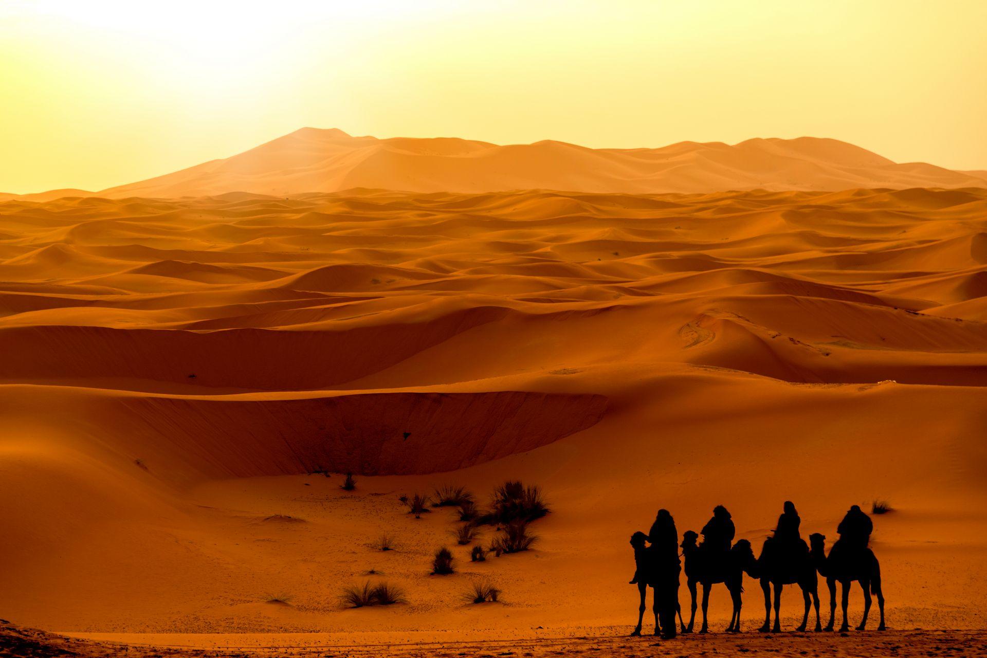 Краски Магриба – Марокко с севера на юг