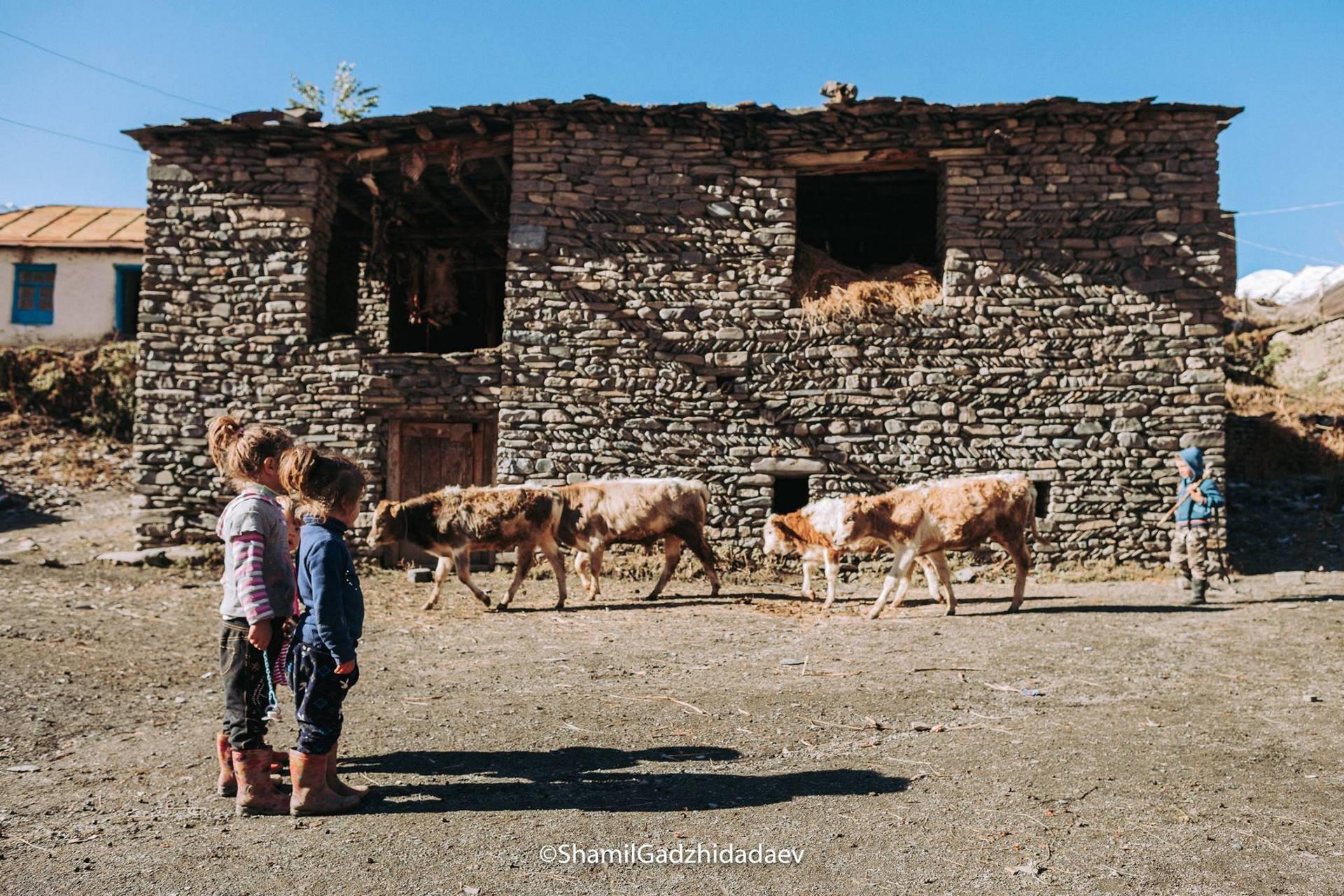 Экспедиция по горам Дагестана
