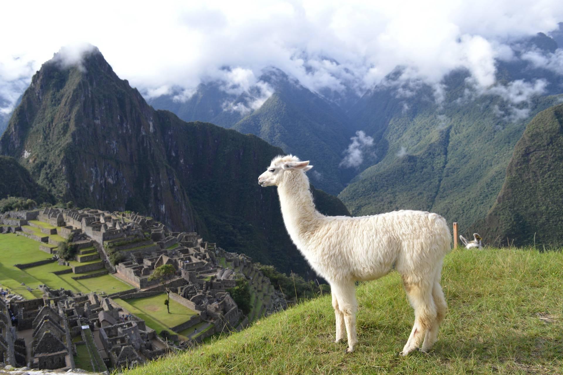 Новогоднее Перу: загадки древних цивилизаций